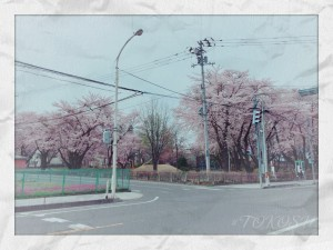 IMG_5572[1]